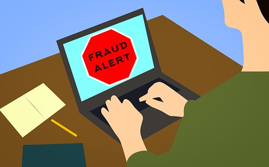 Infographic of person typing on a laptop with 'Fraud Alert' on the screen