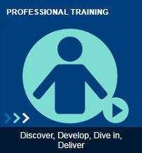 The icon of the Professional Training module
