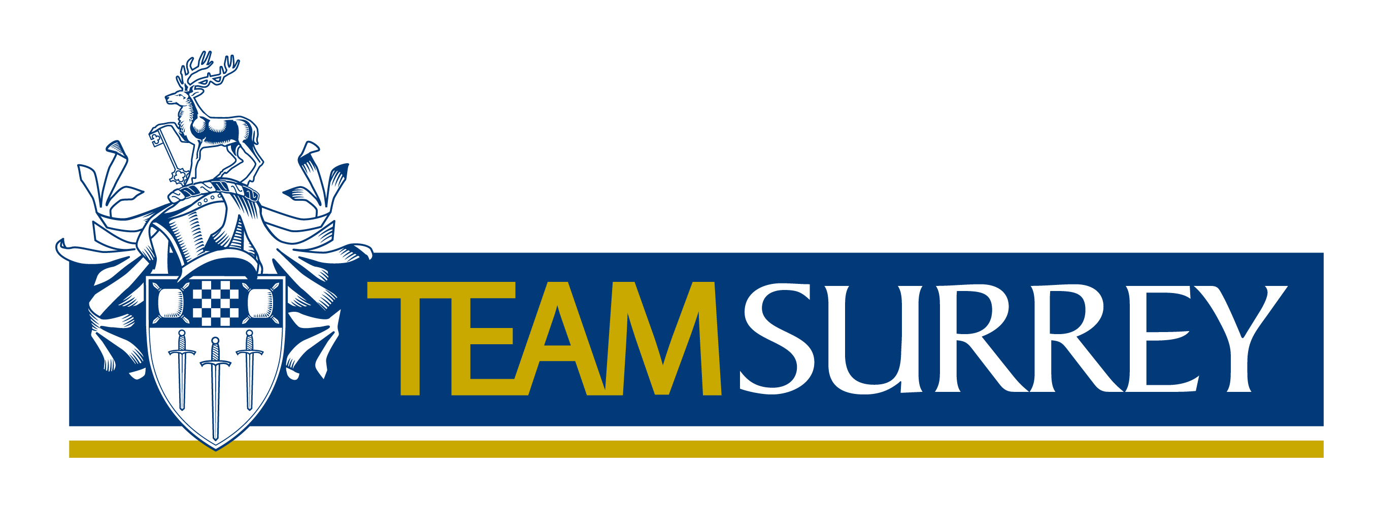 Support Team Surrey Our Experiences At Surrey