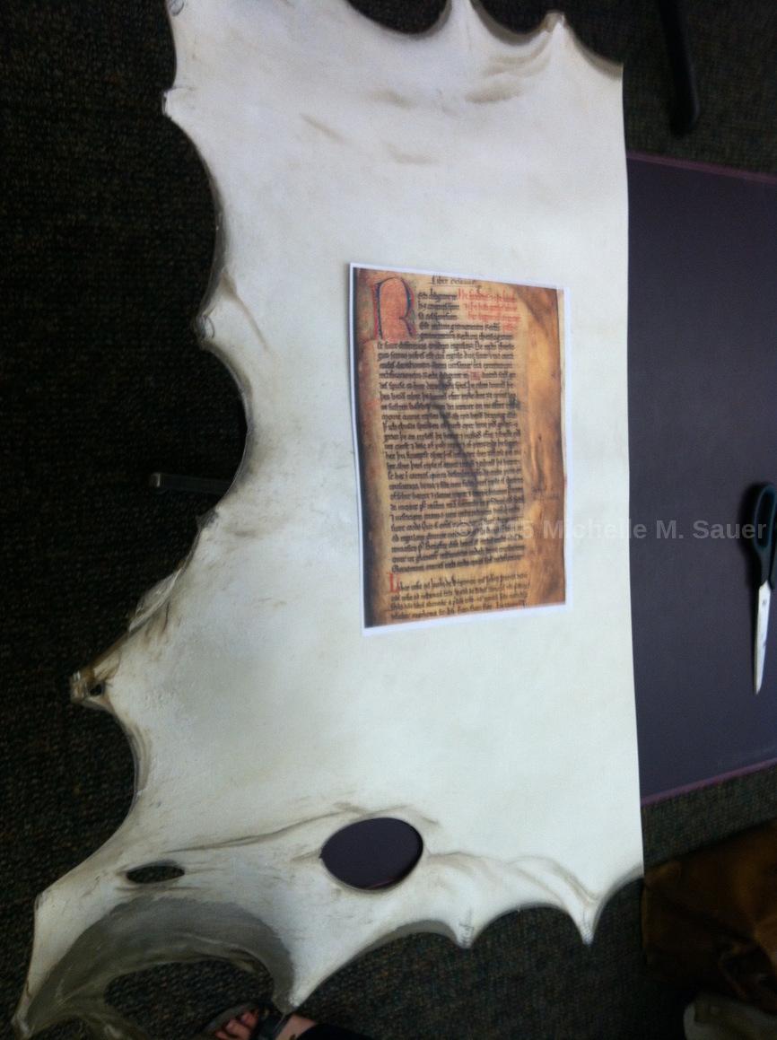 Sauer measuring parchment