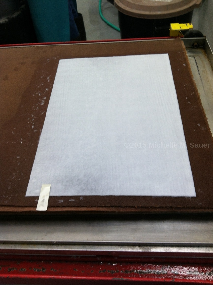 Sauer papermaking
