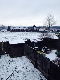 snow picture 1