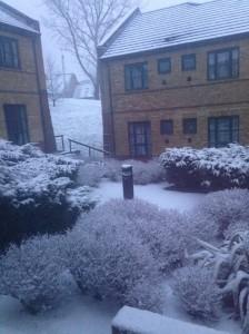 Snow University Court