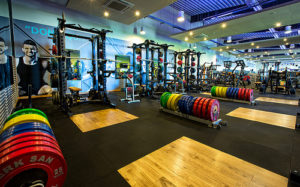 Surrey Sports Park Gym