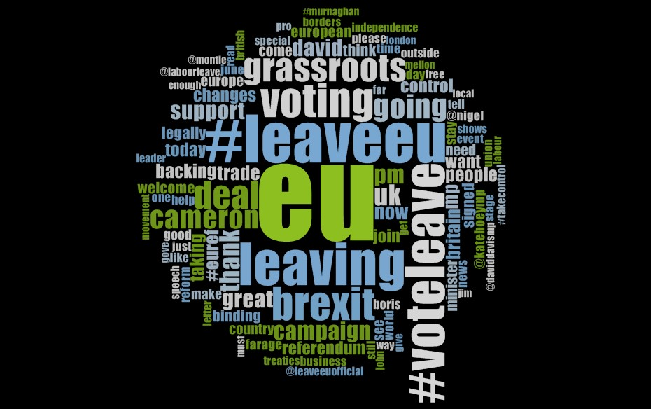 Leave campaigns (vote_leave, LeaveEUOfficial)