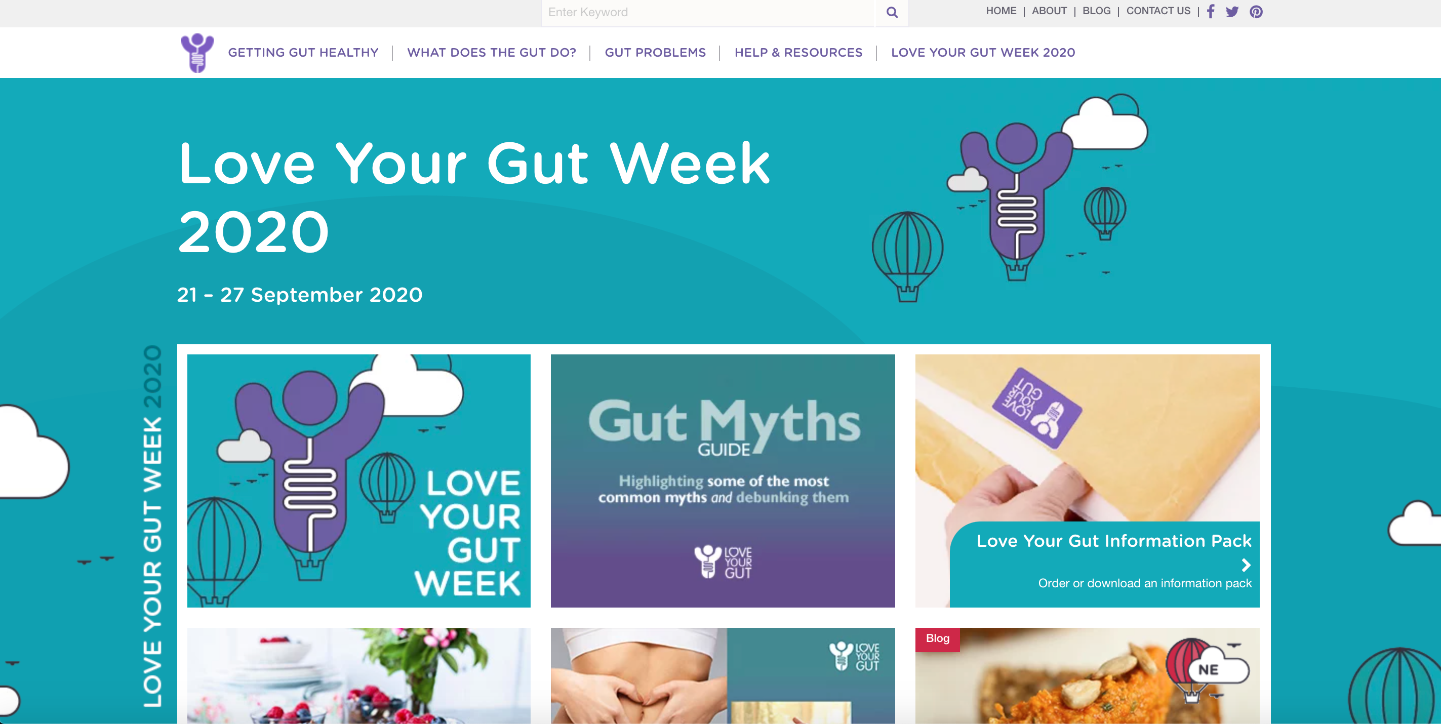 Image of the Love Your Gut Webpage