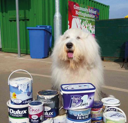 The Dulux Dog, brand mascot