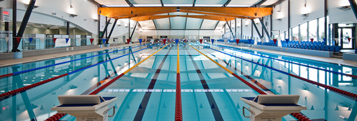 39768_swimming_banner